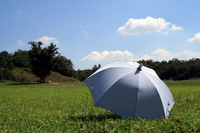 芝生に置いた開いた日傘