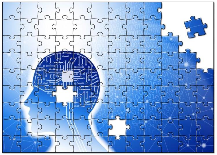 物忘れは脳の進化、AI研究でわかった「脳の本番、成熟期は56才から」