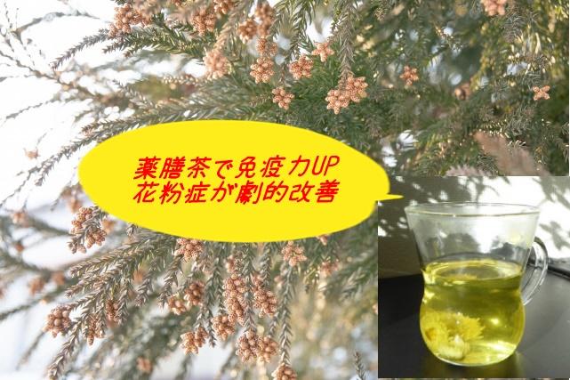 花粉症対策は花粉対策より免疫力UPが効果的 薬膳茶で解消しました