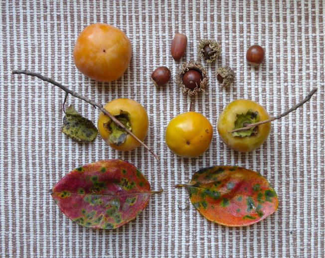 柿実り月冴える秋を満喫